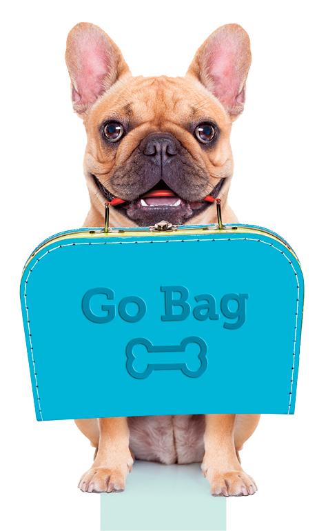Pet Go Bag
