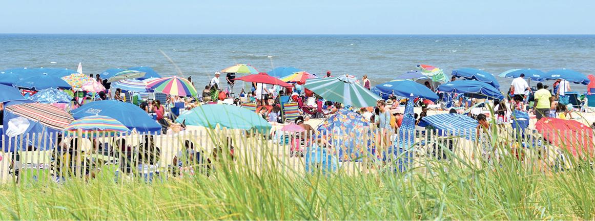 Rehoboth Beach Umbrellas