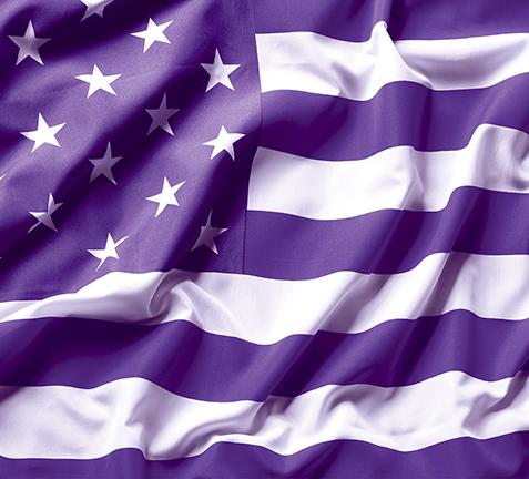 Purple American Flag