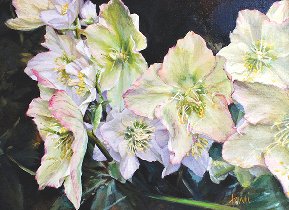 Early Spring-Hellebore artwork by Lani Browning