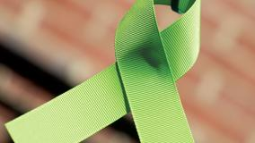 Green Lymphoma Ribbon in the CAMP Rehoboth Courtyard