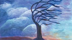 Storms Make Trees Grow Deeper Roots by Jane Duffy